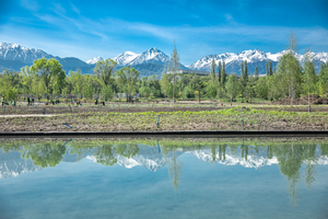 Almaty Botanical Garden Reconstruction is within Reach of Completion